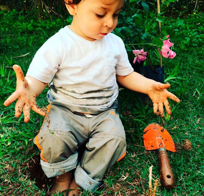 6 dicas para um jardim seguro e agradável as crianças